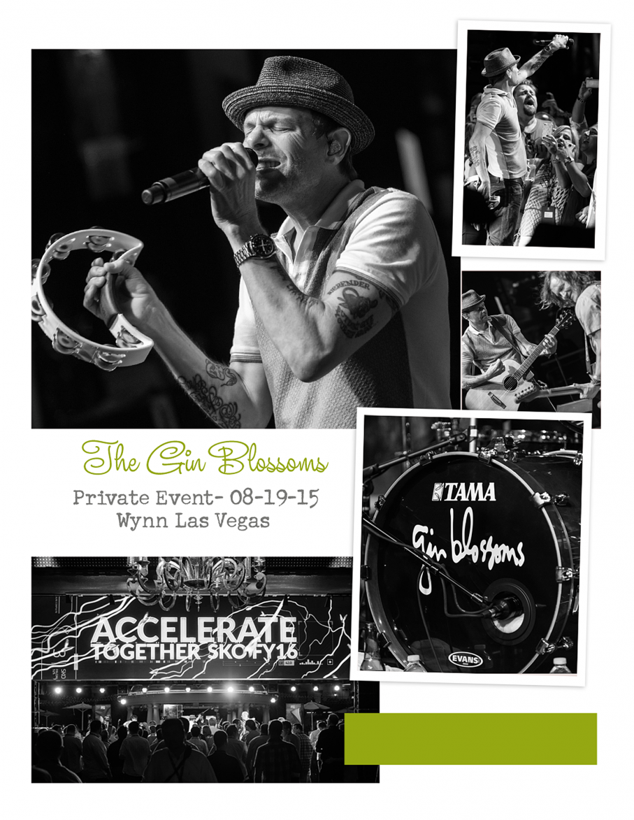 Gin Blossoms collageFB