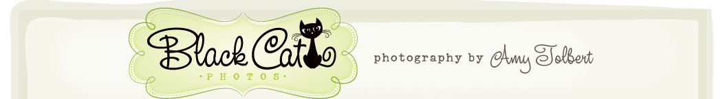 Black Cat Photos logo